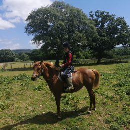 gentle lead rein and first ridden