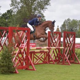 Talented, Genuine and Affectionate 9 yr old Showjumping mare