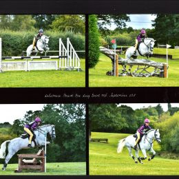 Fabulous all round competition pony eventer / WHP (HOYS, RI, Burghley) / SJ, 9 yrs, mare, Connie X