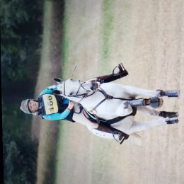Talented Eventer/ Allrounder