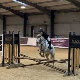 Due to time wasters back up for sale 12.2 Appaloosa Mare