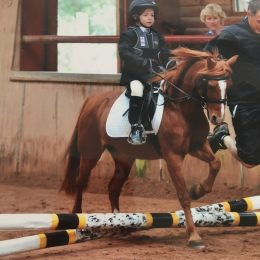 Tiny tots lead rein pony for loan