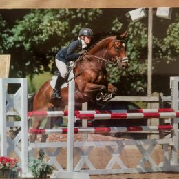 Perfect PC/BE/Amateur Schoolmaster or Dressage Diva