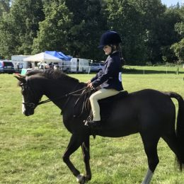 Super Lead Rein Pony Club Pony/ Show Pony