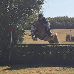 Awesome, smart, confidence giving PC / Showing / NSEA all-rounder