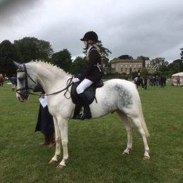 Kindest Allrounder Hunter/PC/Riding Club Mother daughter share