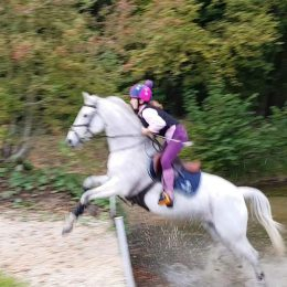 Fun and safe connie x schoolmistress looking for a new best friend 15.1hh with 148 Life Height
