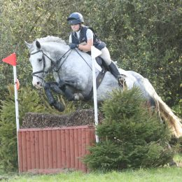 Prefect Grassroots Eventer