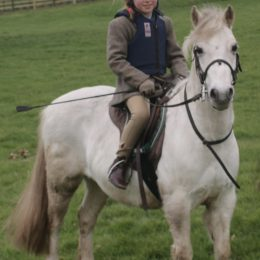Alfie, 11'2 Lead Rein/Off Lead Rein for a Competent Child only