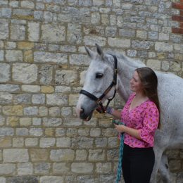 Dressage Schoolmistress and Fun All Rounder - 15.3hh, Irish Sports Horse, Cally (Silver Champion)