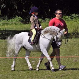 Perfect First Pony!