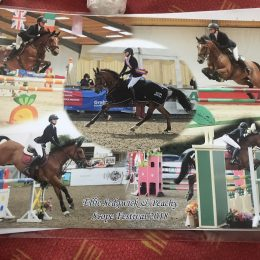 14.2 PEAHCY TOP TRACK SHOWJUMPER FOR SALE