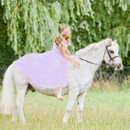 WANTED Special 13'2 Proven Pony Club Genuine School Master/Hunting Pony