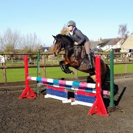 Tilly 13.2h Fun All rounder