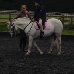 12.2 hands lead reign first ridden Welsh sec c 8yr old mare