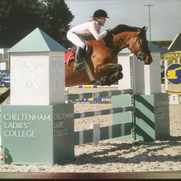 14.1 lovely showjumping/all rounder 8 yr old Mare