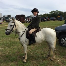 Ultimate 1st Hunting Pony / PC Allrounder
