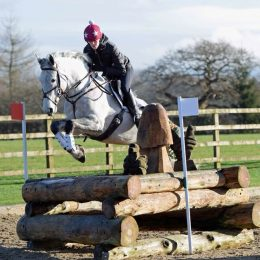 **One in a million**- Finnan Hillview- approx 15.2 5 year old Irish sports horse mare
