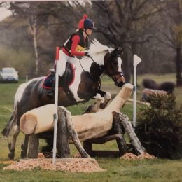 Fantastic 13.2 Grassroots Level (Pony Club Regional Championships) Competition Pony