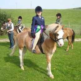Riley, 11.3, Sec A, Lead Rein Pony or off lead rein for competent child who wants to have fun!