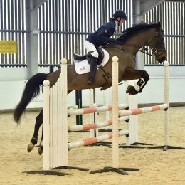 Super 16H Pony Club Eventer