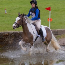 Ideal Second Pony, Irish Skewbald Mare, 13.3HH, 12 Years Old