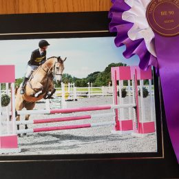 Striking talented proven 15.3 event / allrounder