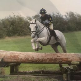 13HH Grey Connemara Mare, Loves jumping, Champion WHP, Hunting, Team Chase; ODE, SJ, Hunt Relay